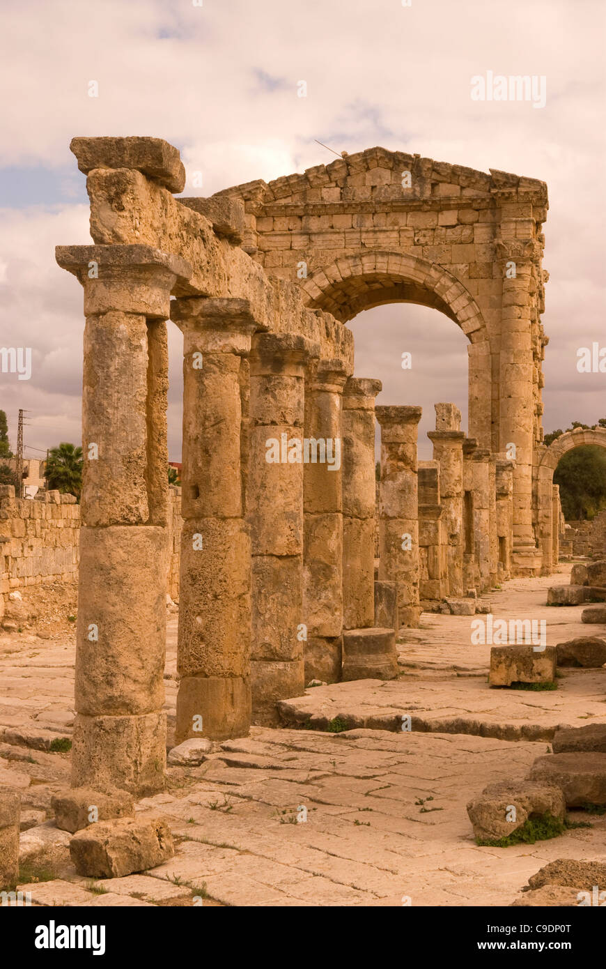 Al-Bass archaeological site, Tyre (Sour), southern Lebanon. Stock Photo