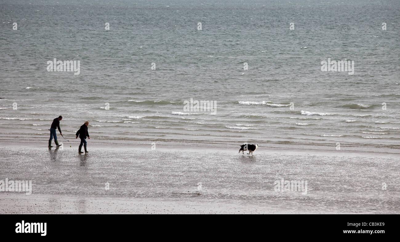 people-and-dog-on-bognor-regis-beach-west-sussex-CB3KE9.jpg