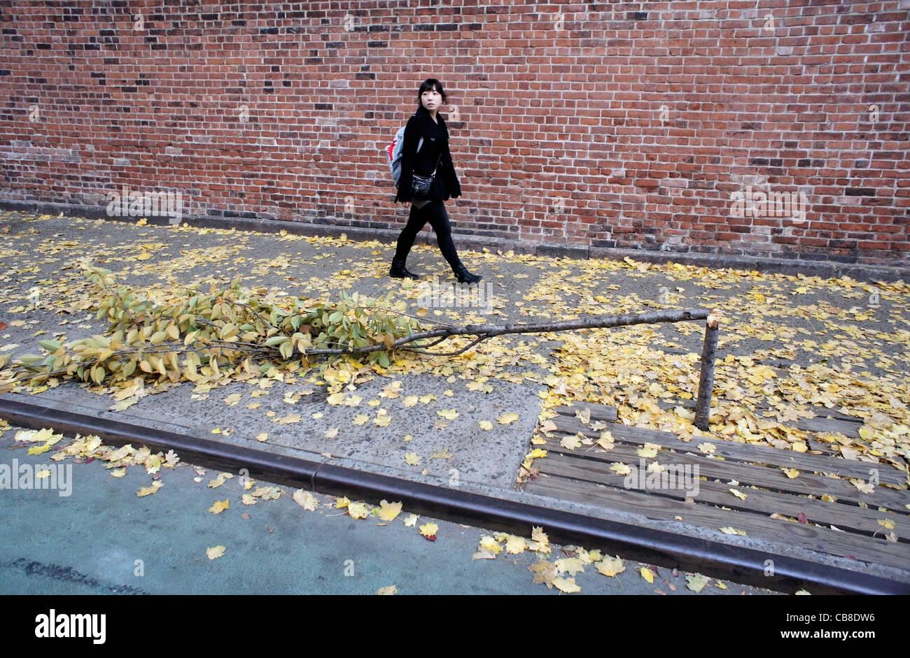 asian-woman-walks-past-a-broken-tree-in-
