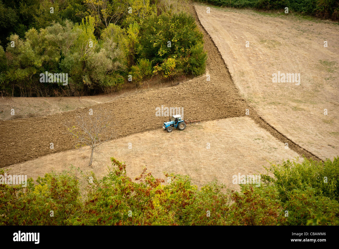 farmer plowing field with tractor in Ancona Italy - Stock Image