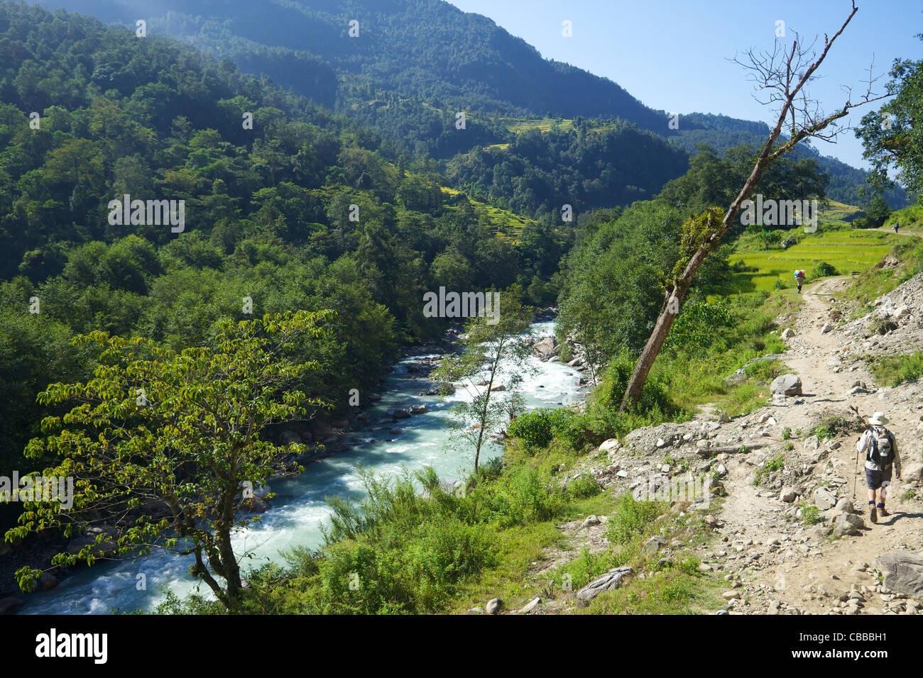 Trek from Ghandruk to Nayapul, Annapurna Sanctuary Region, Nepal, Asia - Stock Image