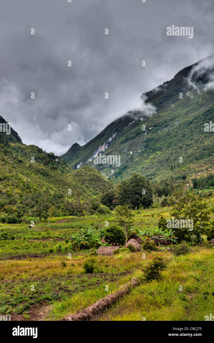 Traditional Dani Village at Baliem Valley, Baliem Valley, West Papua, Indonesia - Stock Image