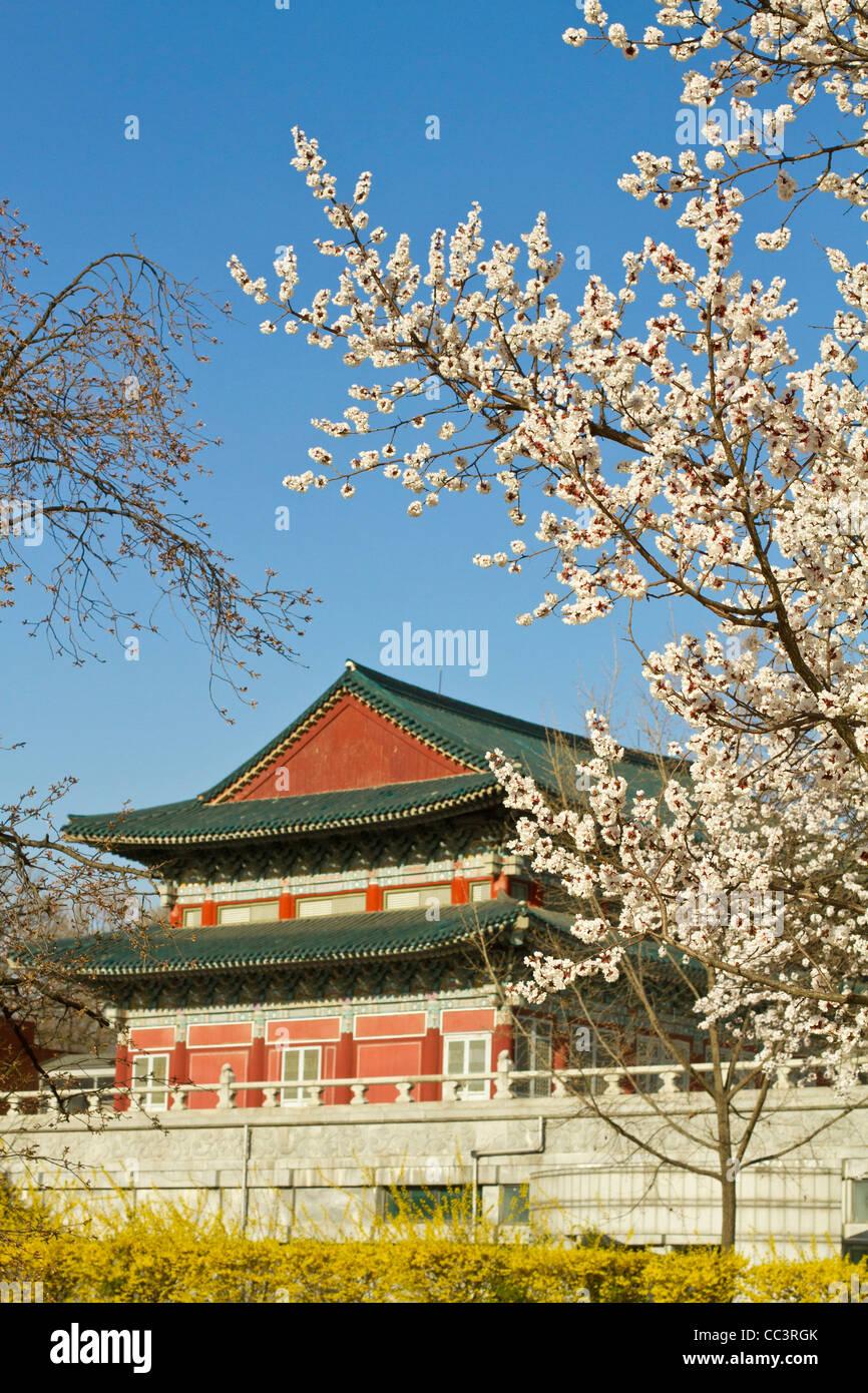 Korea, Seoul, Gyeongbokgung Palace, - Stock Image
