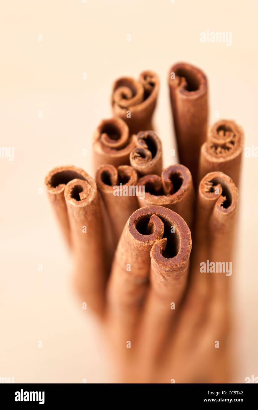 Bunch of Cinnamon sticks. Narrow DoF - Stock Image