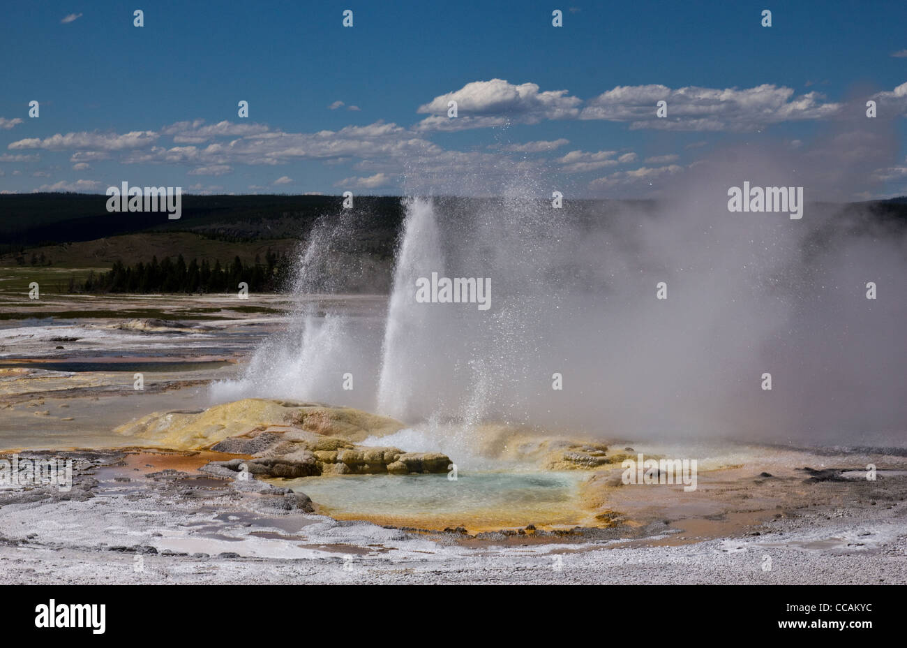 Clepsydra Geyser found in the lower geyser basin in Yellowstone National Park. - Stock Image
