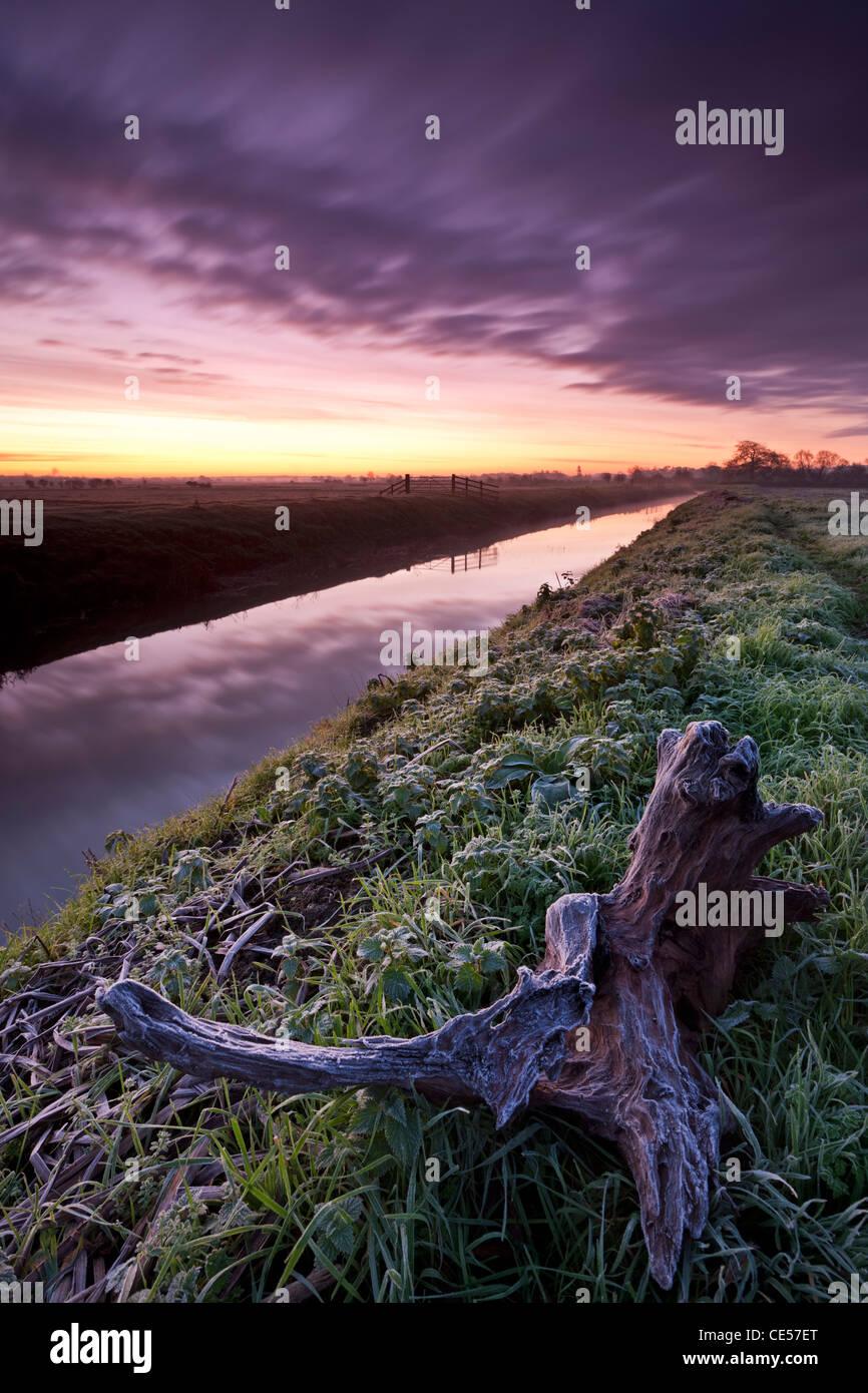 Frosty dawn beside the River Brue near Glastonbury, Somerset Levels, UK. Autumn (November) 2011. - Stock Image