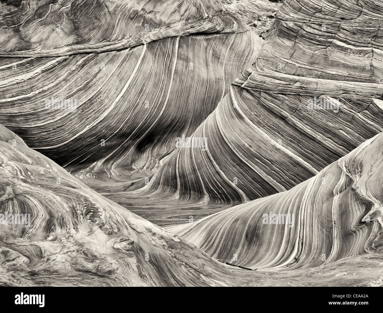 Sandtone formation in North Coyote Buttes, The Wave. Paria Canyon Vermillion Cliffs Wilderness. Utah/Arizona - Stock Image