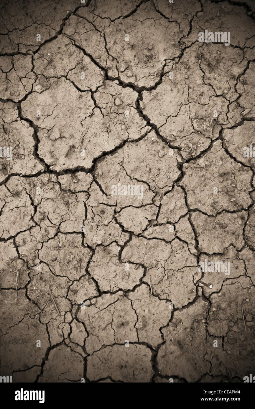 Dry soil - Stock Image