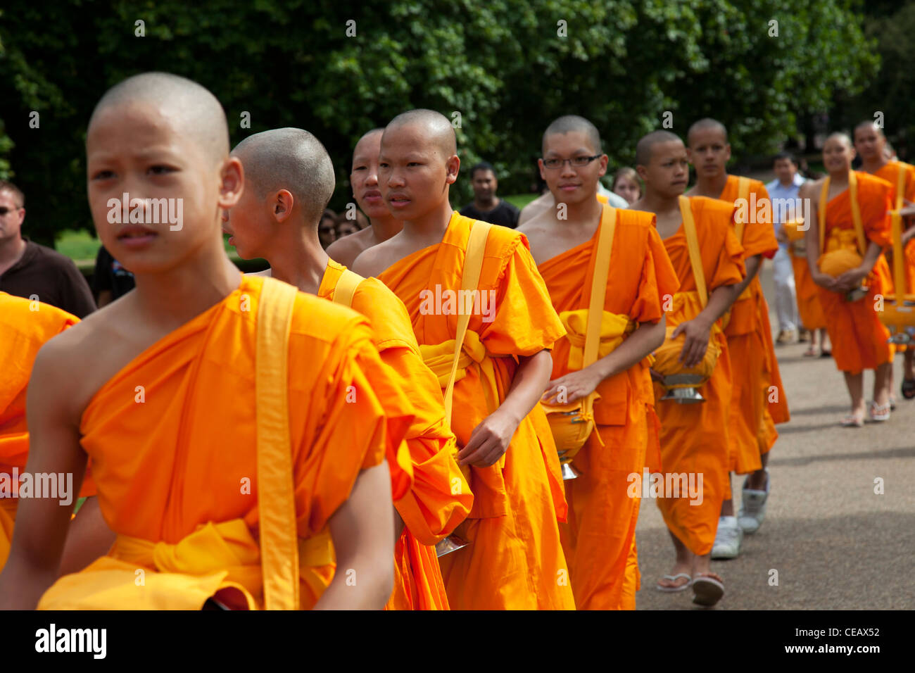 9f5265197a Young Tibetan Buddhist monks wearing orange robes walk through Green Park