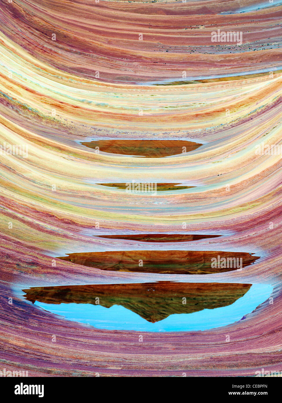 Sandtone formation and pool of water in North Coyote Buttes, The Wave. Paria Canyon Vermillion Cliffs Wilderness. - Stock Image