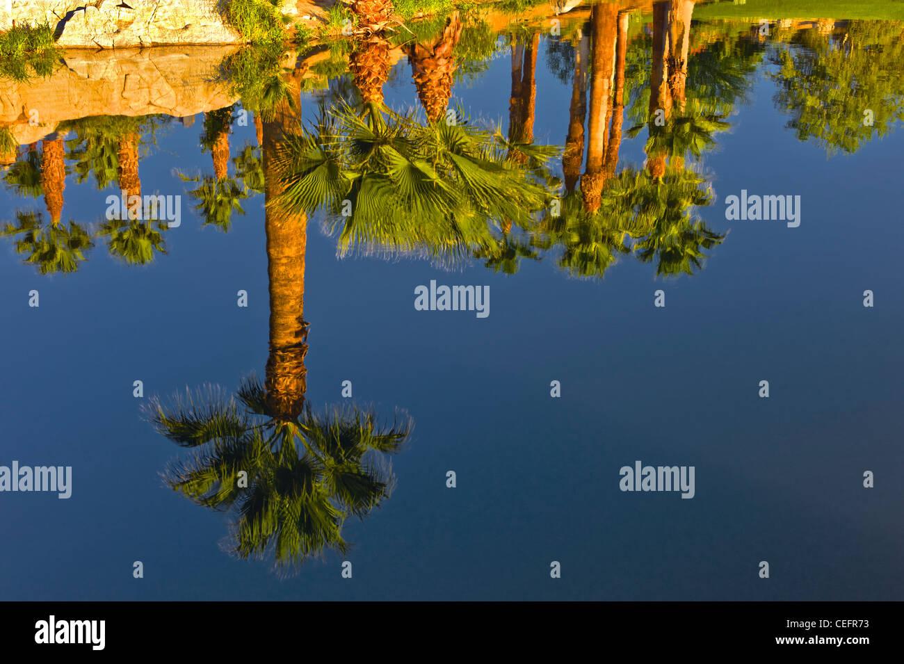 Pond at Desert Willow Golf Resort, Palm Desert, California - Stock Image