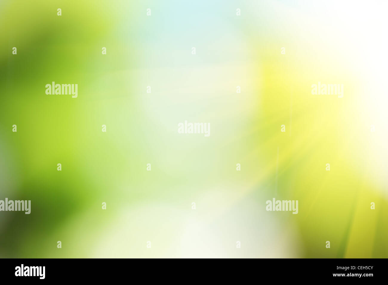Natural green abstract light background. - Stock Image