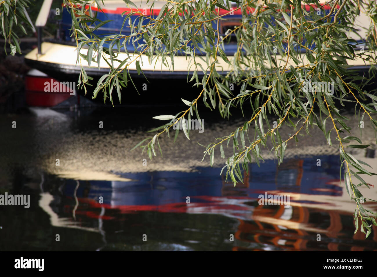 A narrowboat reflected in the waters of the river avon near Bidford on Avon, Warwickshire, with a branch of willow Stock Photo
