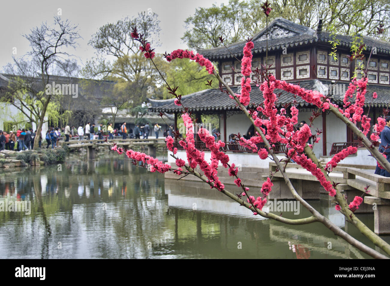 Pond and pagoda at Humble administrator's garden - Suzhou (china) - Stock Image