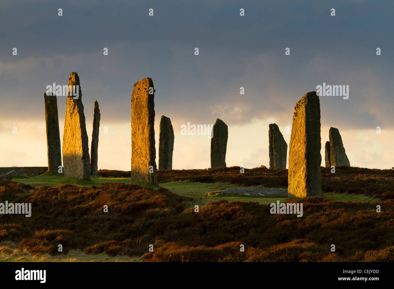 Ring of Brodgar stone circle, Orkney - Stock Image