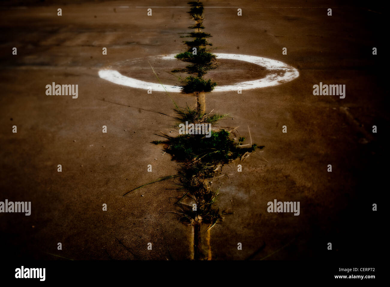 Crack in the sidewalk where plants grow in parking lot, night time. - Stock Image