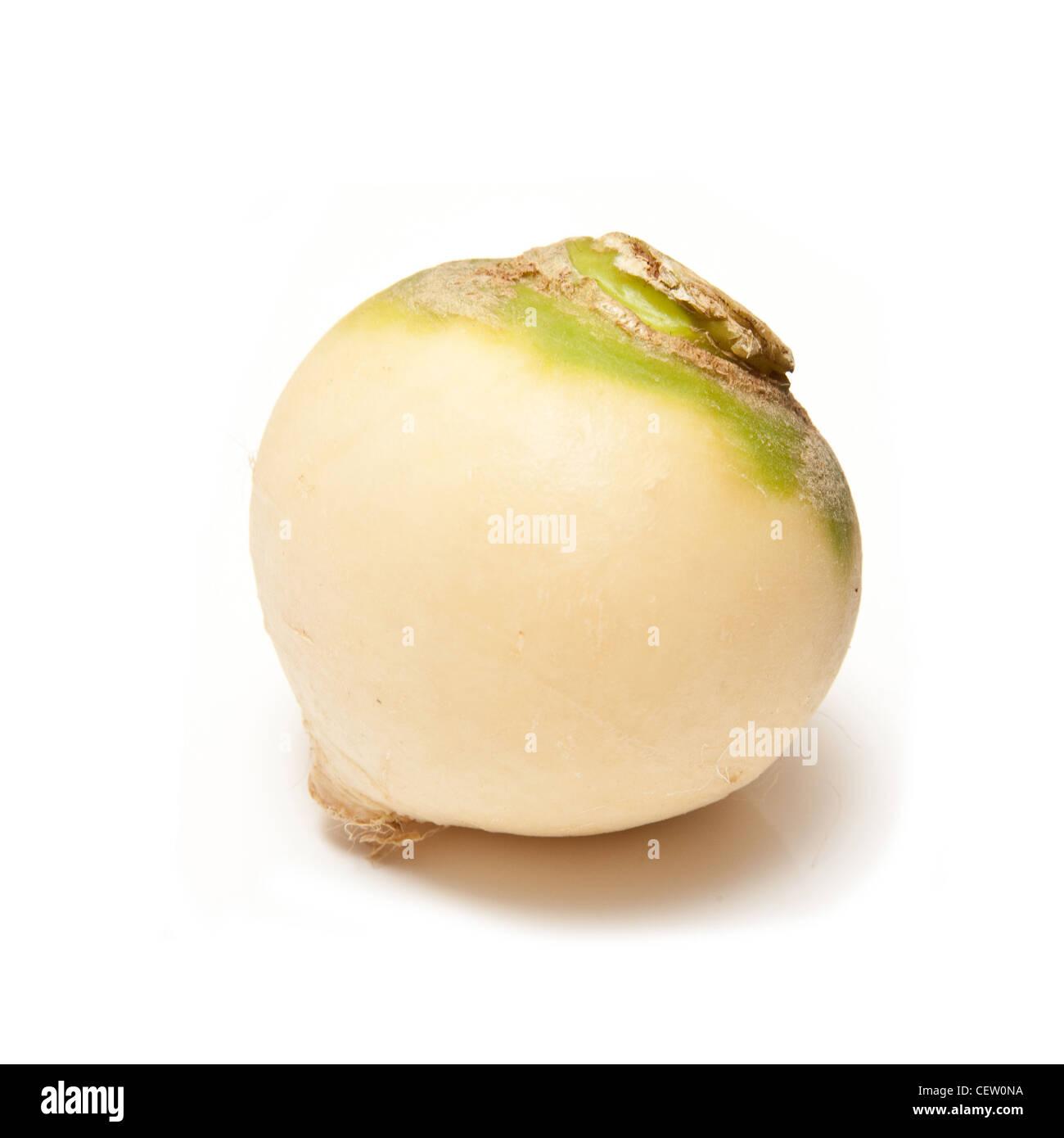 Turnip isolated on a white studio background. - Stock Image