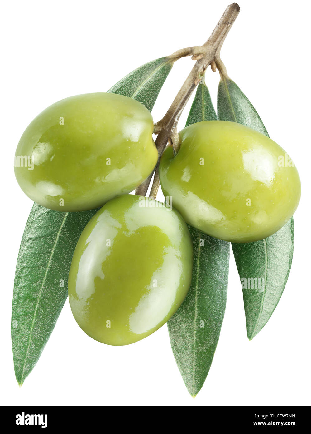 Olives with leaves on a white background. File contains the path to cut. - Stock Image