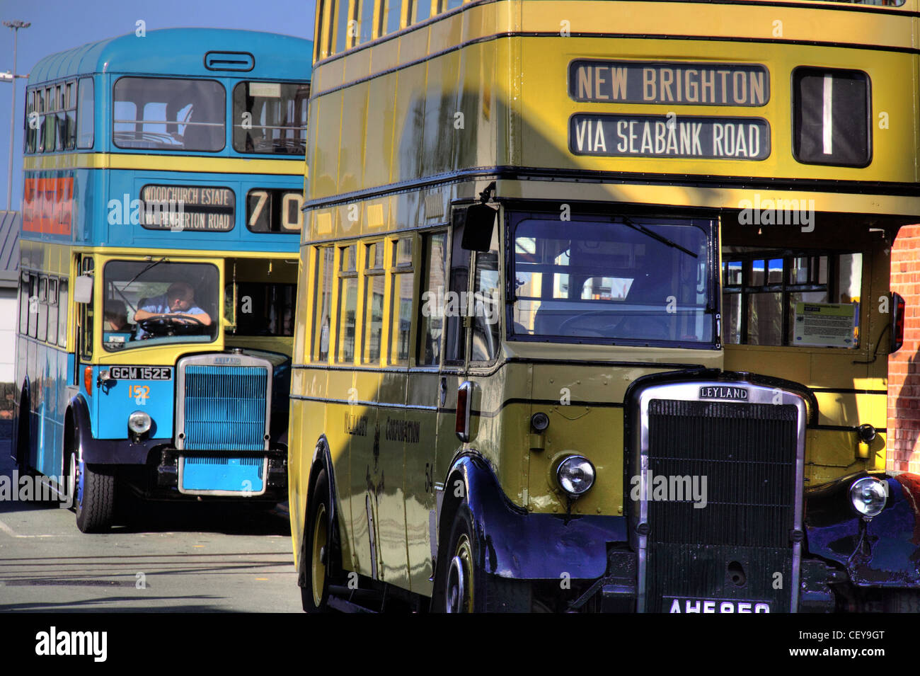 Old,Leyland,Wirral,double,decker,Buses,in,Blue,and,Yellow,Birkenhead,New,Brighton,Merseyside,Liverpool,passenger,transport,merseytravel,depot,museum,via,Seabank,road,twerlies,scouse,scousers,transport,bus,corporation,Birkenhead,Corporation,and,Wallasey,Corporation,motor,buses,Wirral,Transport,Museum,1951,Leyland,PD2/1,AHF,850,(54).,Preserver,Cedric,Greenwood,(1973).,Funding,purchased,New,Wallasey,1BG Project GCM 152E,a 1967 Leyland PD2/37 (152). Restored with Hamilton Quarter funding,Wirral,Museums,/,201,&,1BG,Project,AHF850,and,GCM152E,Birkenhead,Corporation,and,Wallasey,Corporation,motor,buses,gotonysmith,Wirral Transport Museum,Buy Pictures of,Buy Images Of