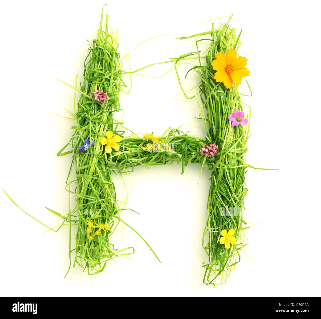 Letters made of flowers and grass isolated on white - Stock Image