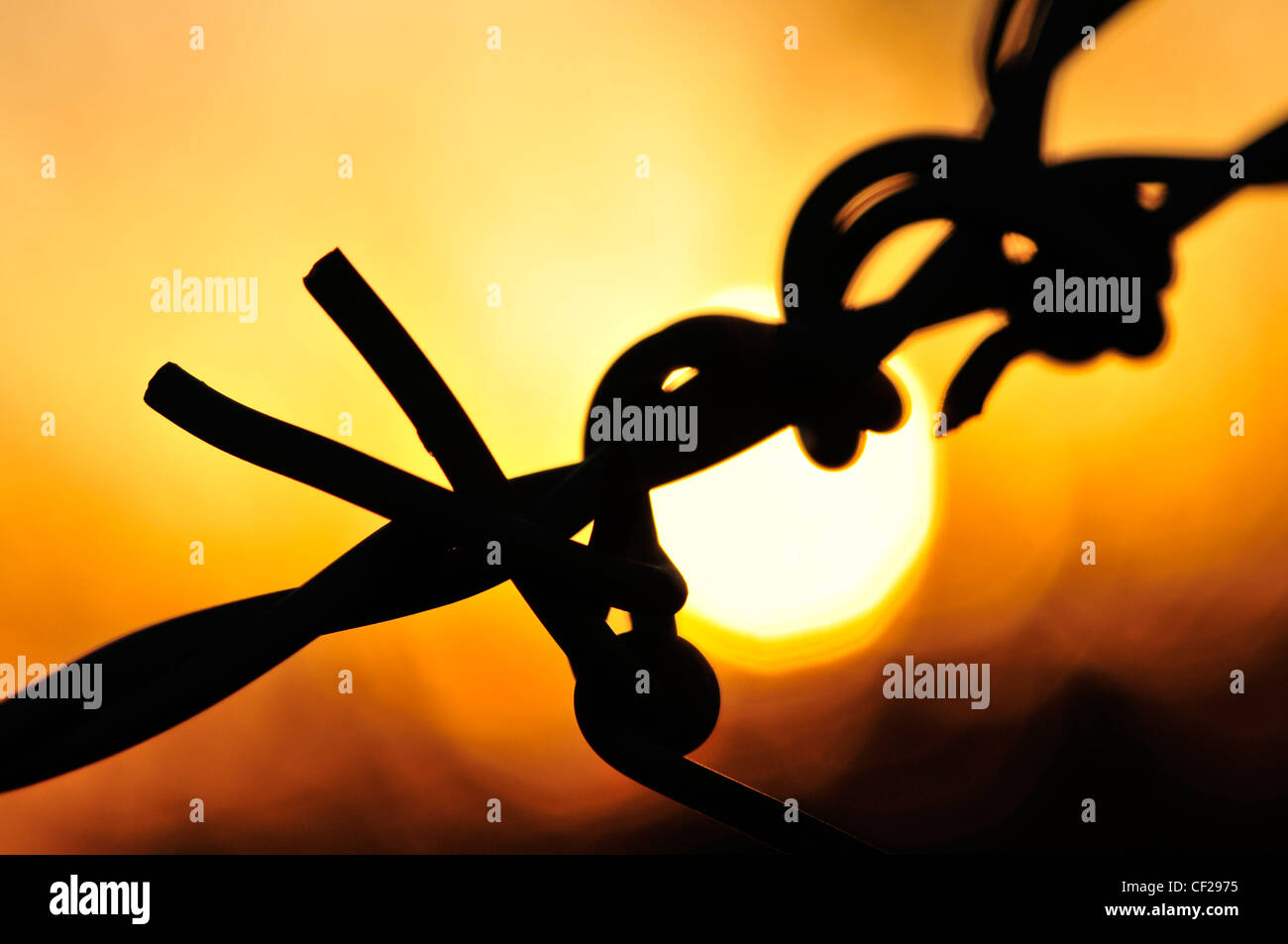 Barbed wire at sunset in Sahuarita, Arizona, USA. - Stock Image