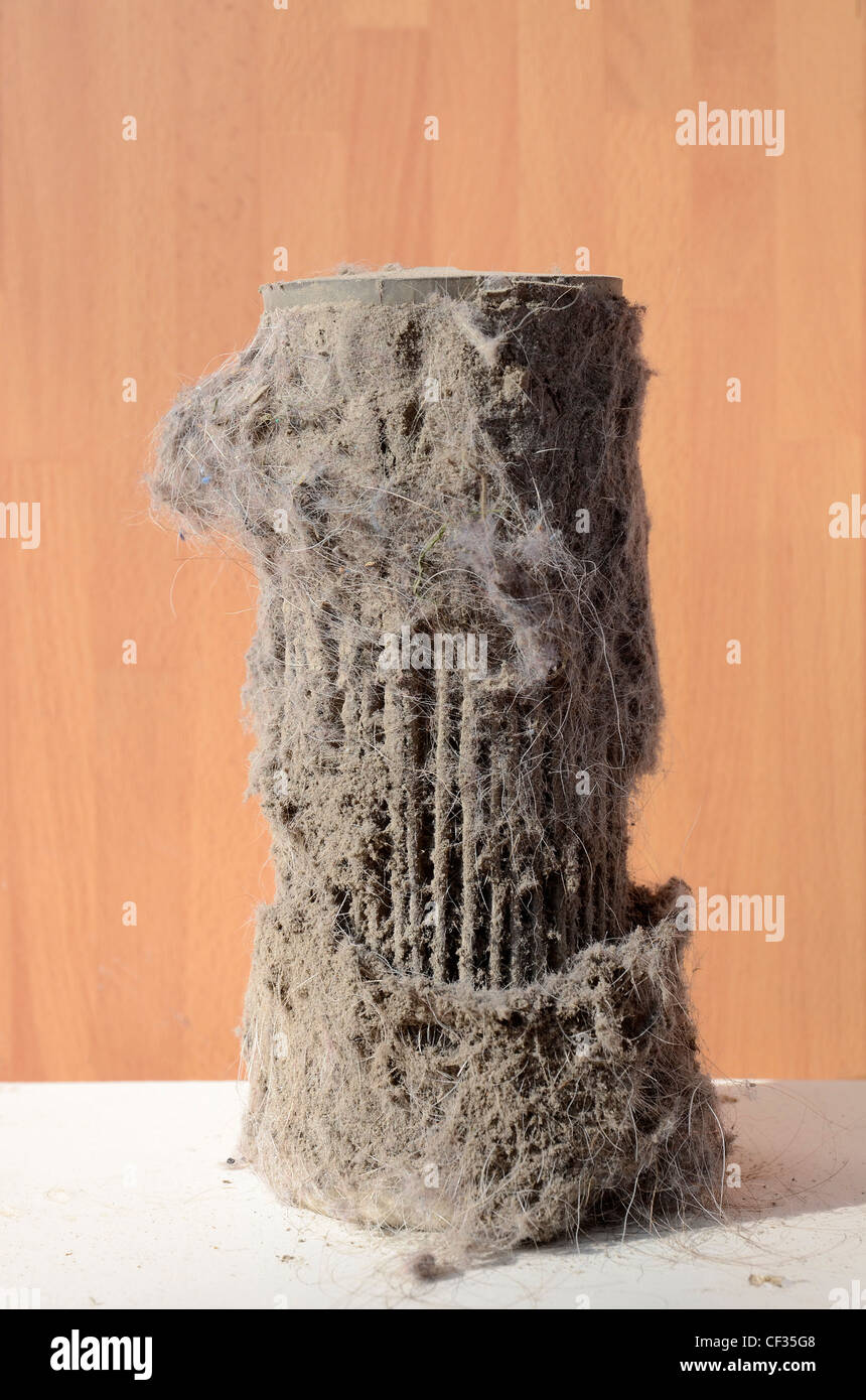 A dirty filter out of vacuum cleaner - Stock Image
