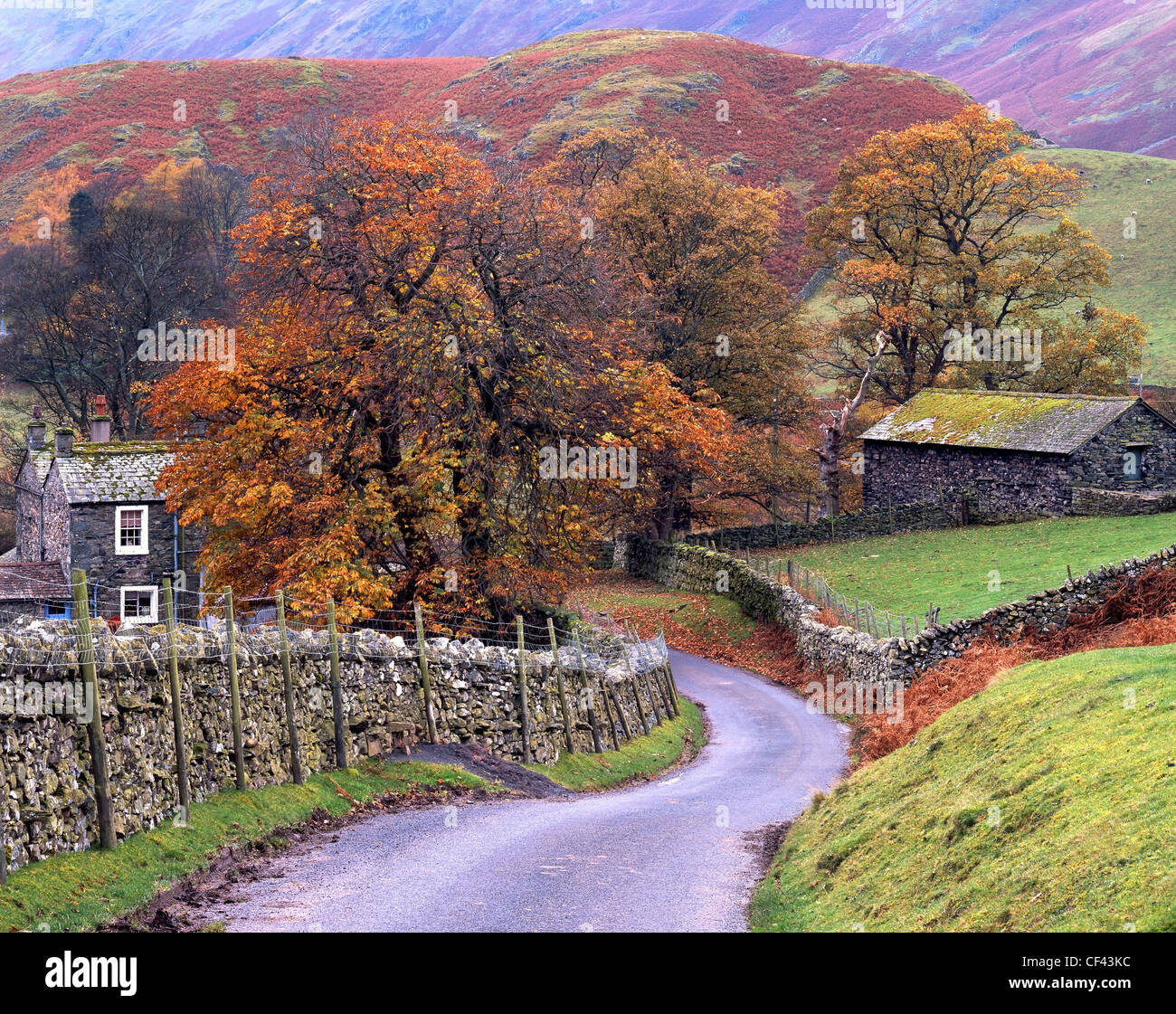 View along a winding country lane towards the remote Cumbrian village of Martindale in the Lake District. - Stock Image