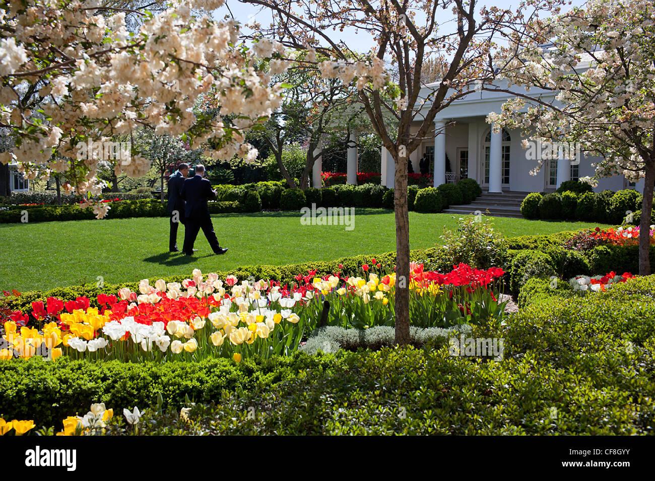 President Barack Obama walks through the Rose Garden in full spring ...
