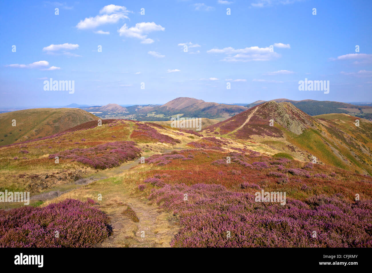 Views over Caradoc, Lawley and the Wrekin from the Long Mynd, Church Stretton Hills, Shropshire, England, United - Stock Image