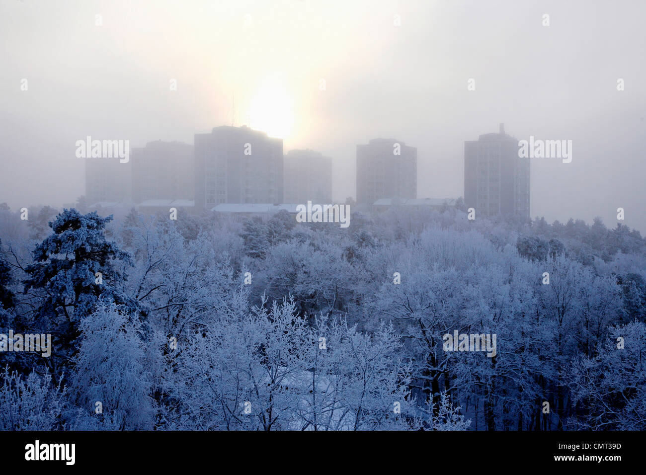 Trees covered by snow against buildings - Stock Image