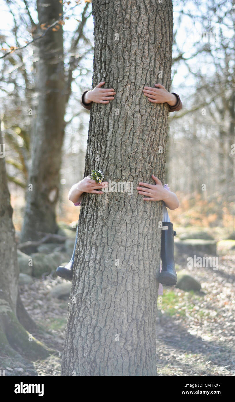 Human hand hugging tree trunk - Stock Image