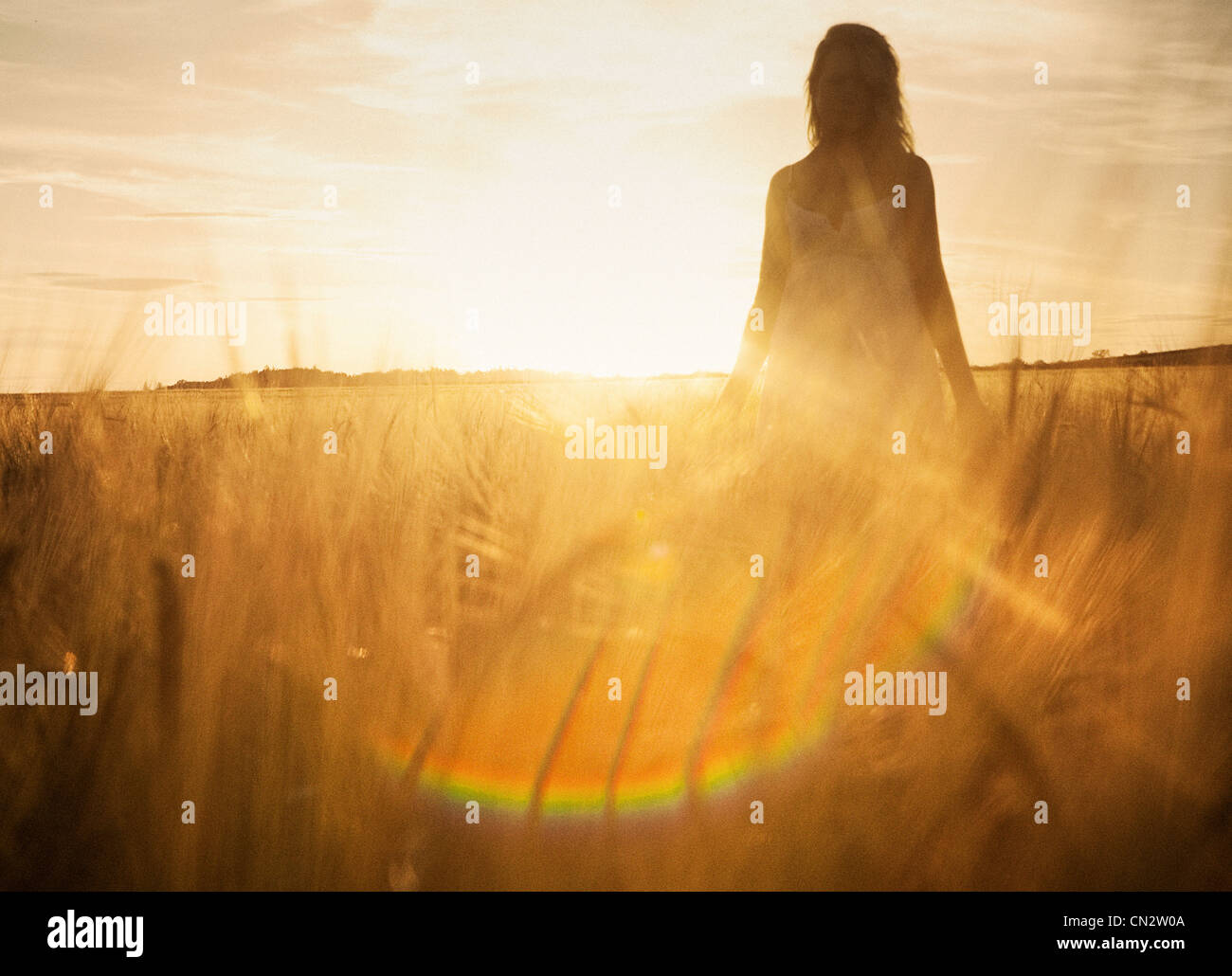 Young woman in barley field - Stock Image