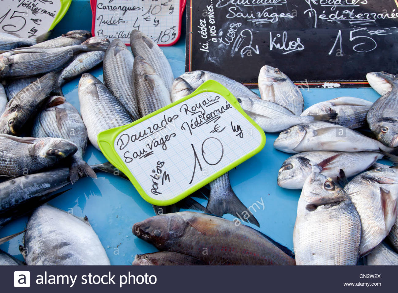 Fresh fish for sale in market - Stock Image