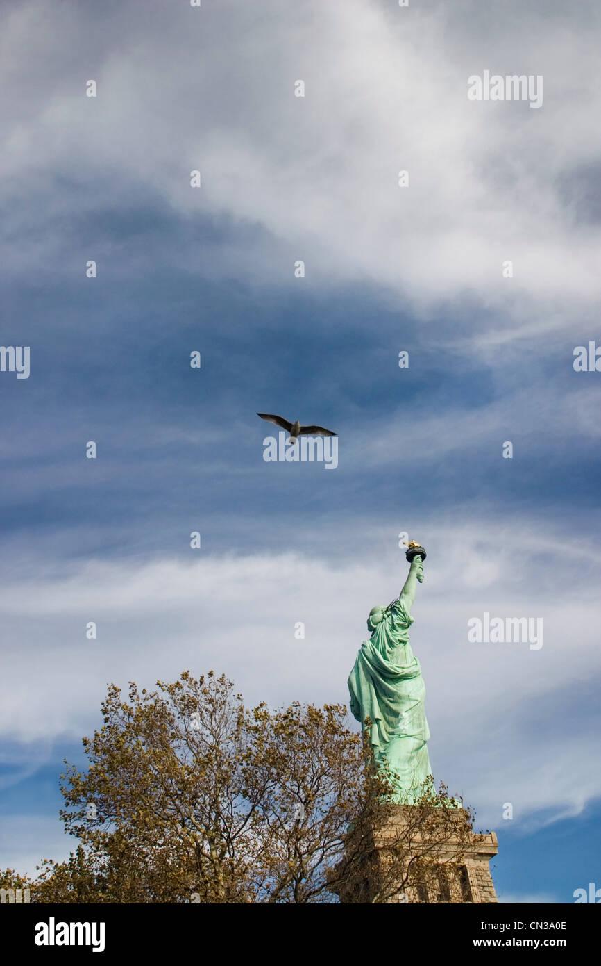 Bird flying over Statue of Liberty, New York - Stock Image