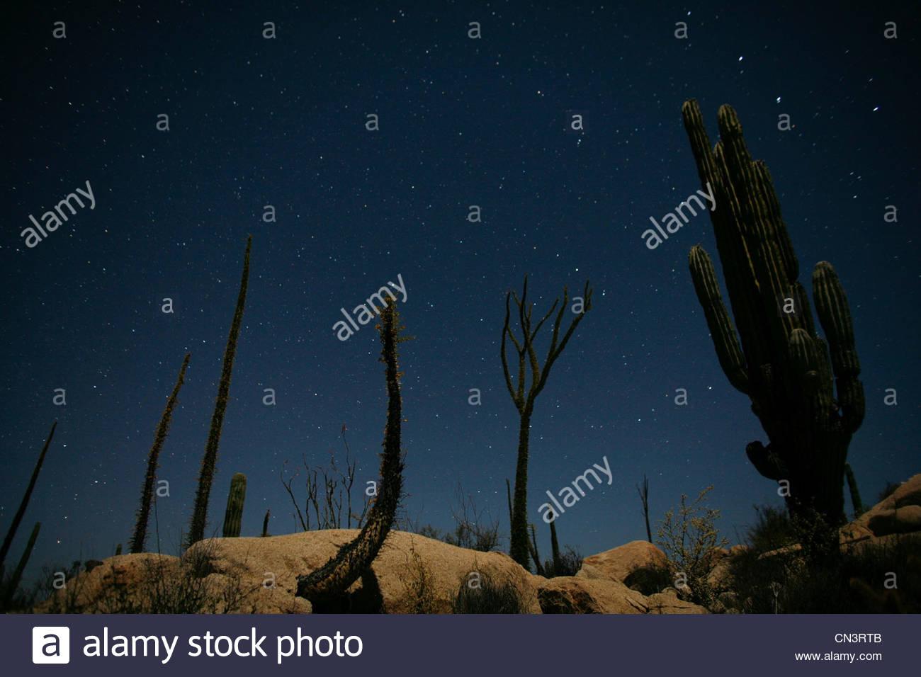 Night sky, Catavina Desert, Baja Peninsula, Mexico - Stock Image