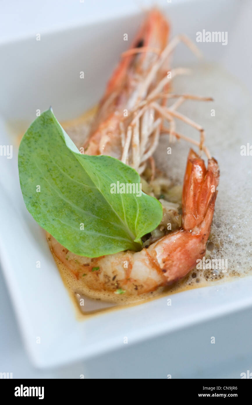 France, Bouches du Rhone, Arles, Prawns with oyster plant leaf and Espelette pepper recipe and Jean Luc Rabanel - Stock Image