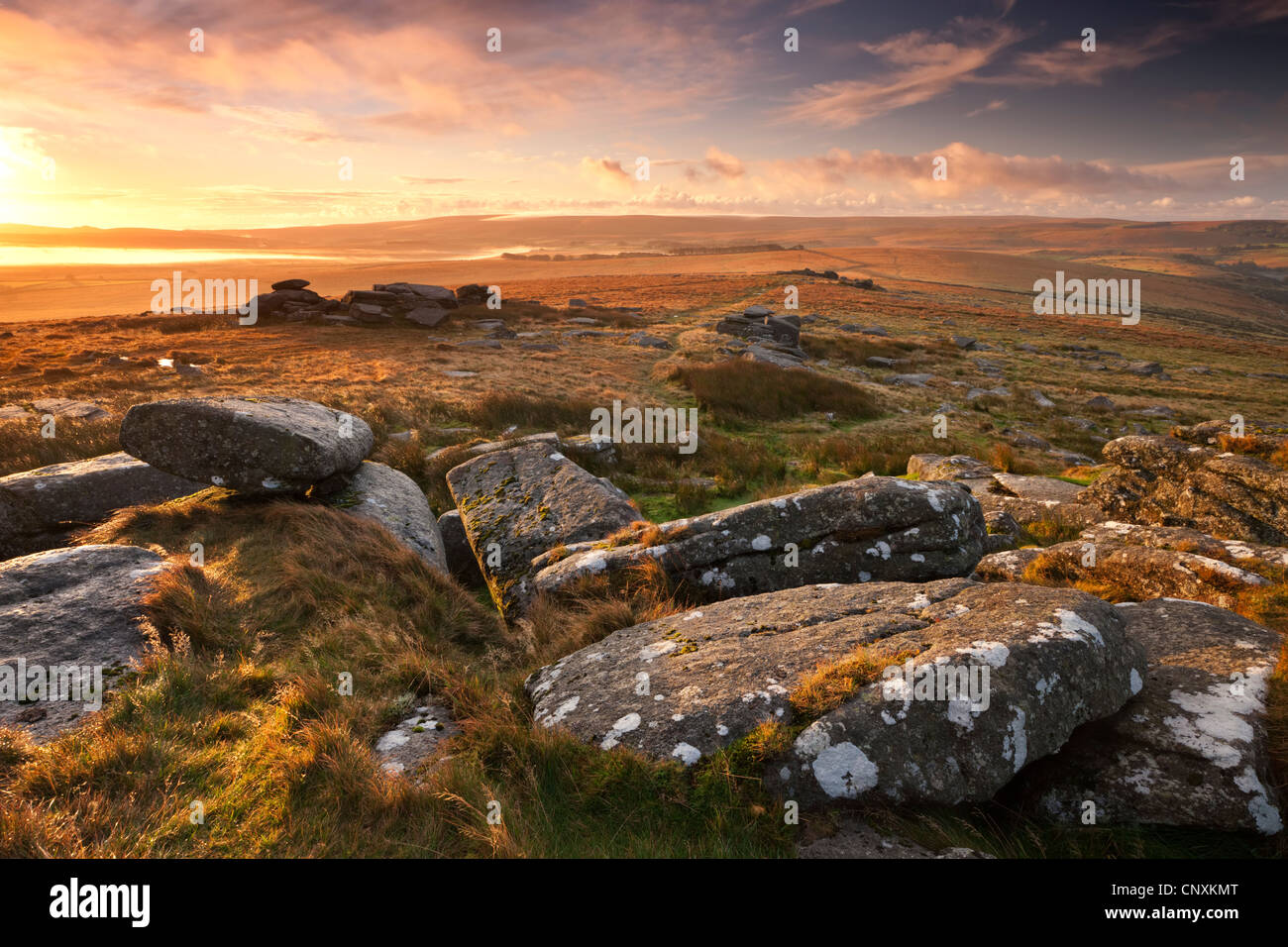 Dawn at Littaford Tor, Dartmoor, Devon, England. Autumn (October) 2011. - Stock Image