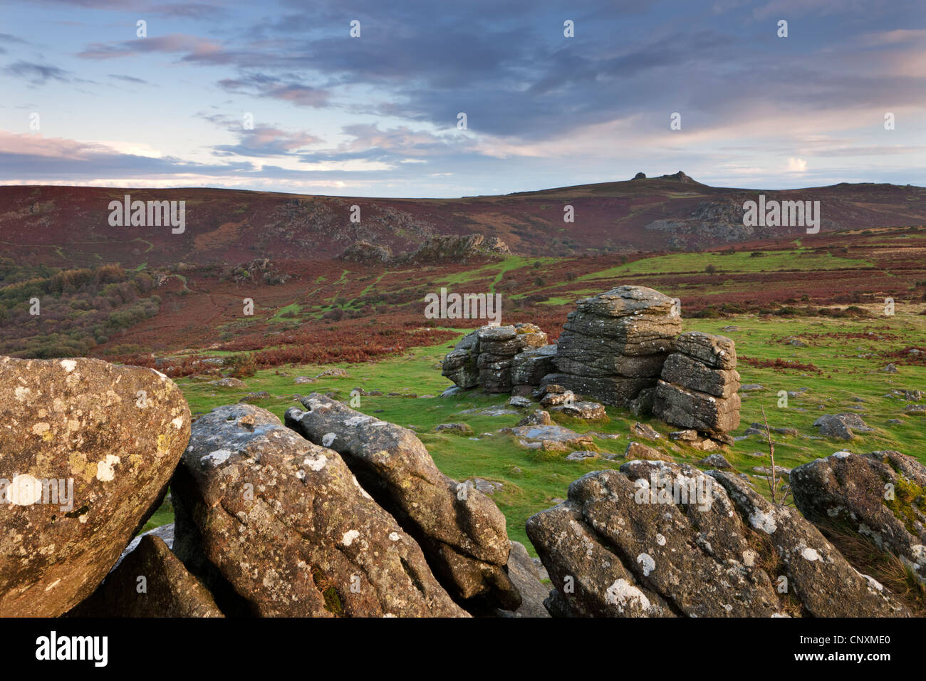 Views to Haytor from Hound Tor, Dartmoor, Devon, England. Autumn (October) 2011. - Stock Image