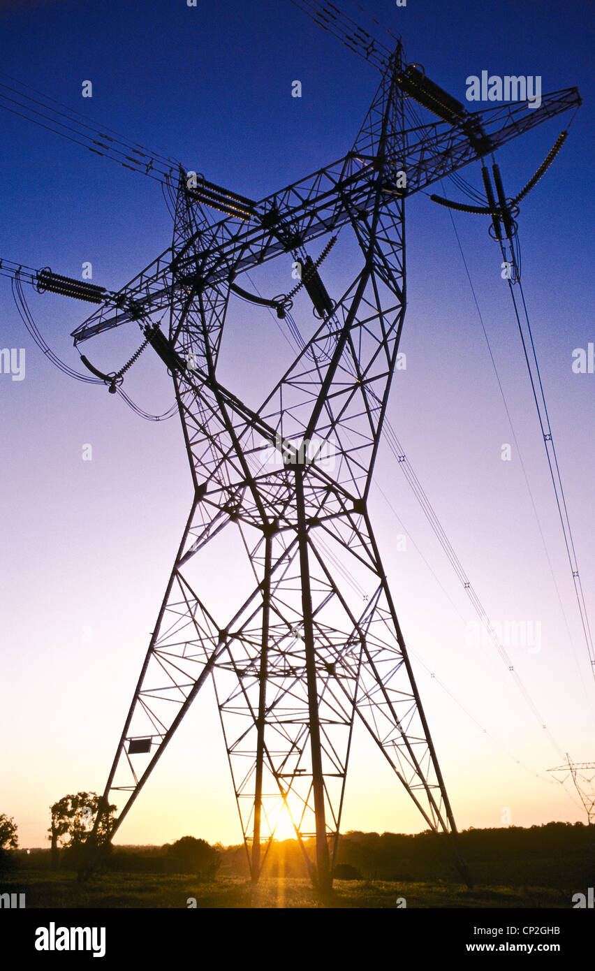 Power lines at sunset - Stock Image