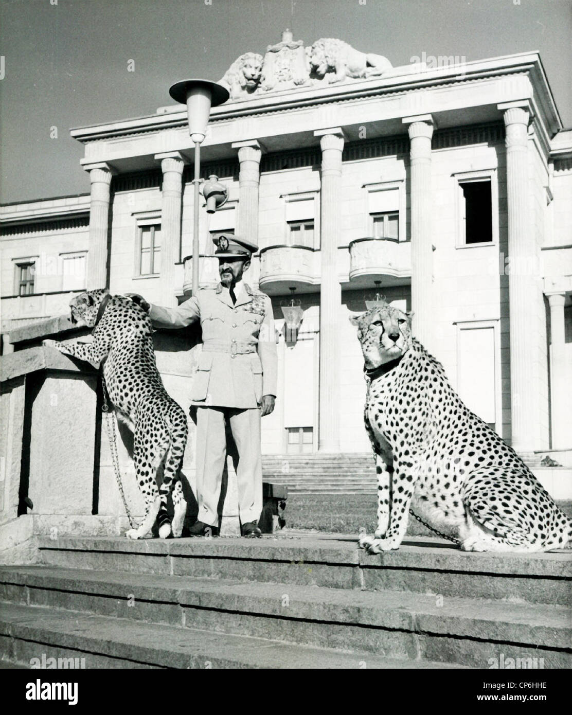 Emperor Haile Selassie of Ethiopia with Pet Cheetahs at Palace Stock Photo