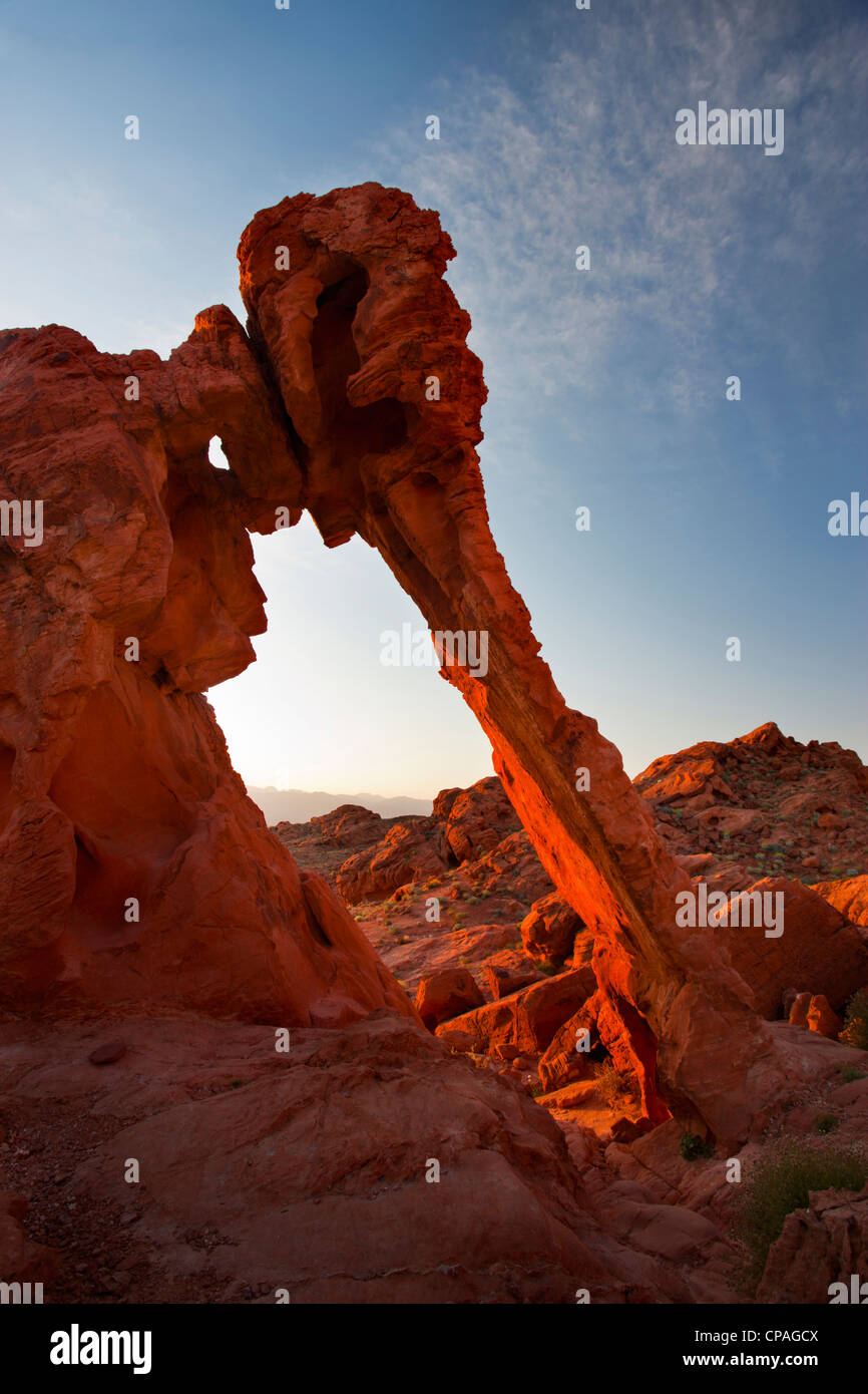 USA, Nevada, Valley of Fire State Park. View of Elephant Rock sandstone formation - Stock Image