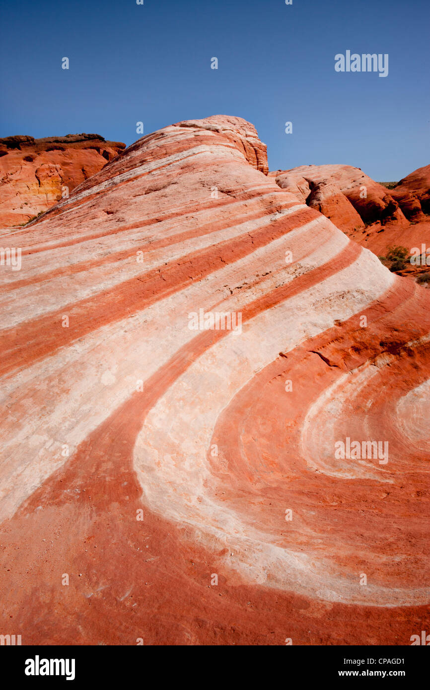 USA, Nevada, Valley of Fire State Park. Striped sandstone formation resembles a wave of stone - Stock Image