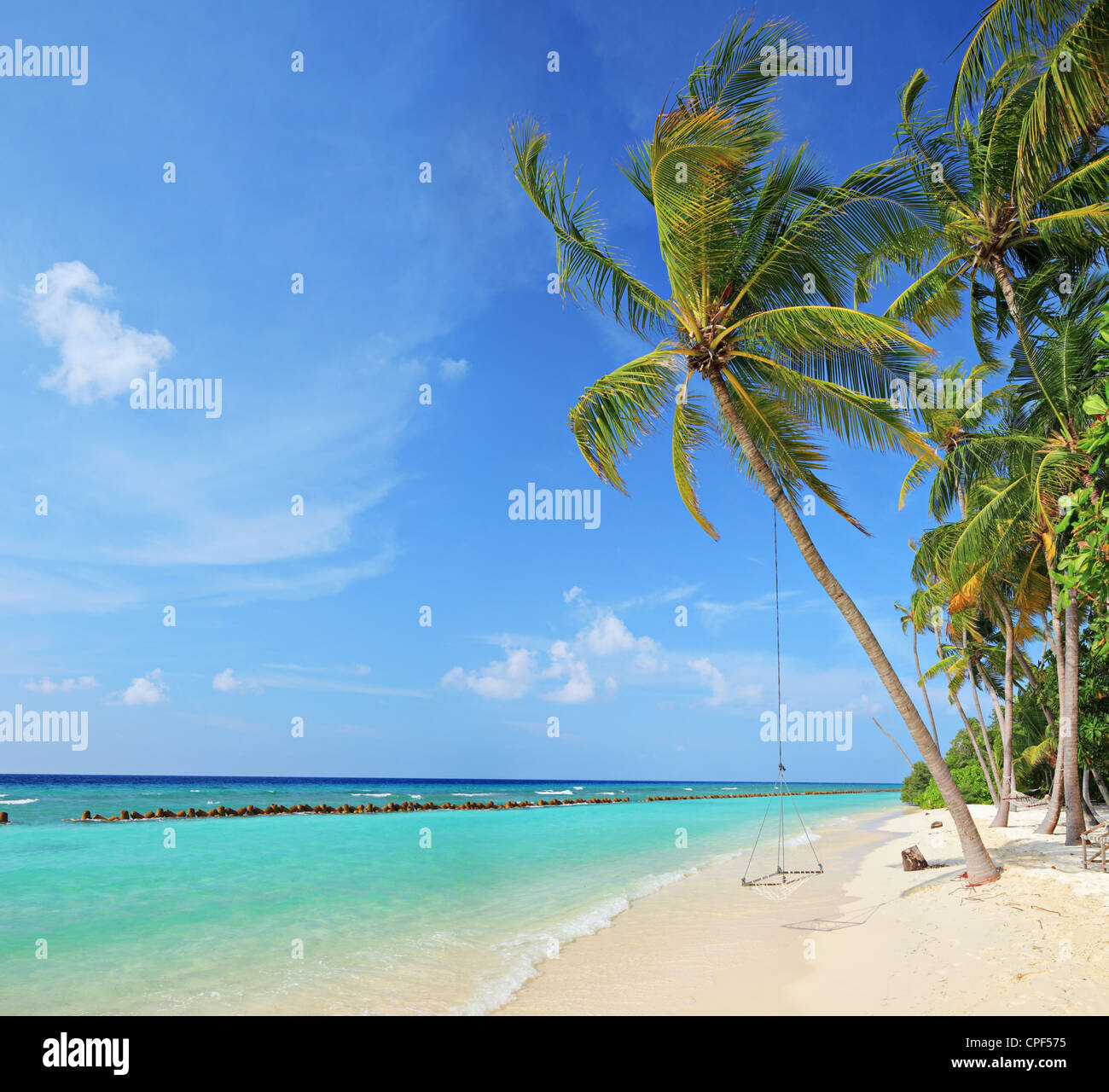 Island Beach Scenes: Beach Scene With A Swing On A Palm Tree On A Sunny Day On