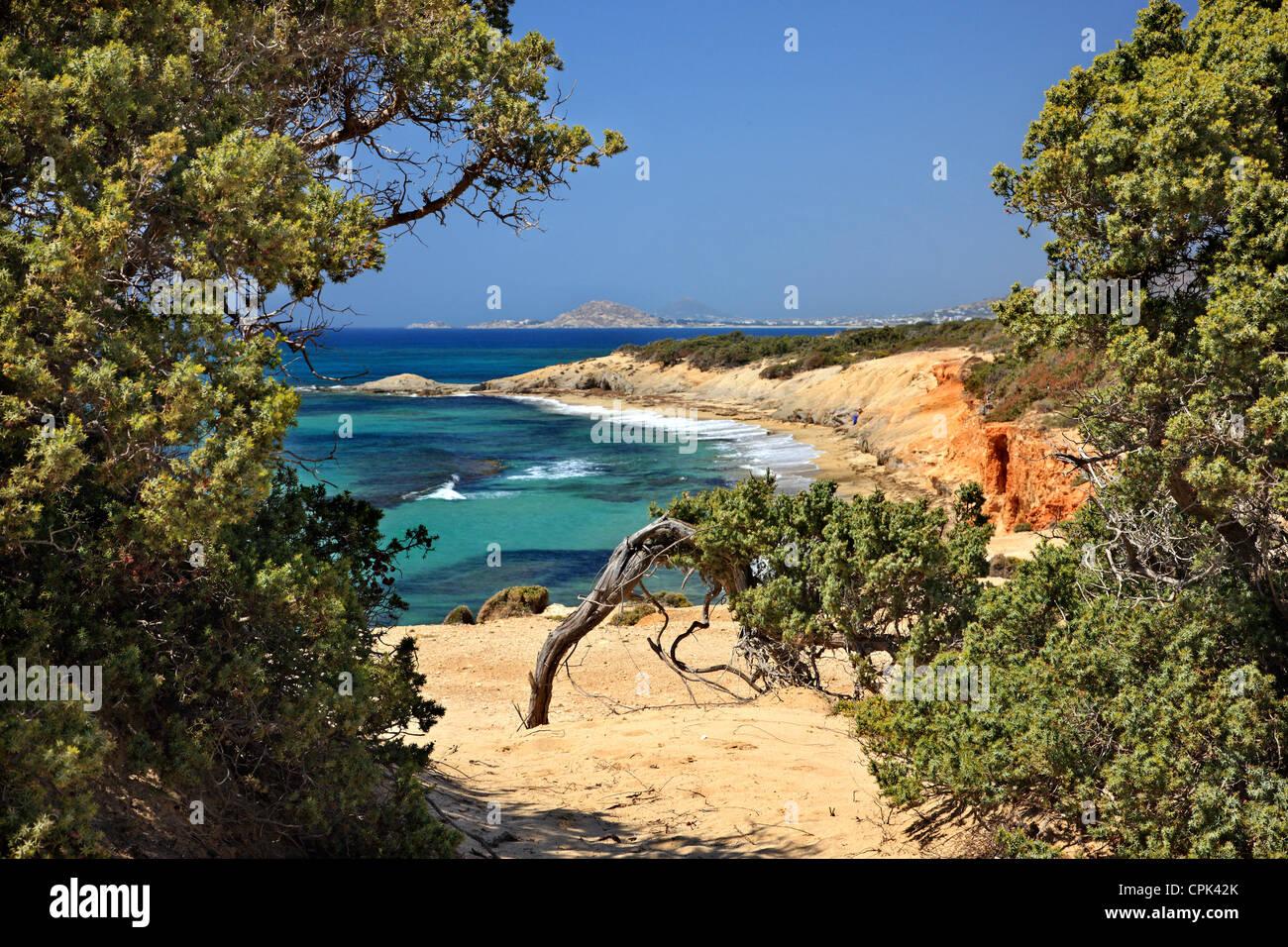 """Passage"" to Alyko beach, at Kedrodasos (""Cedar forest""), Naxos island, Cyclades, GreeceStock Photo"