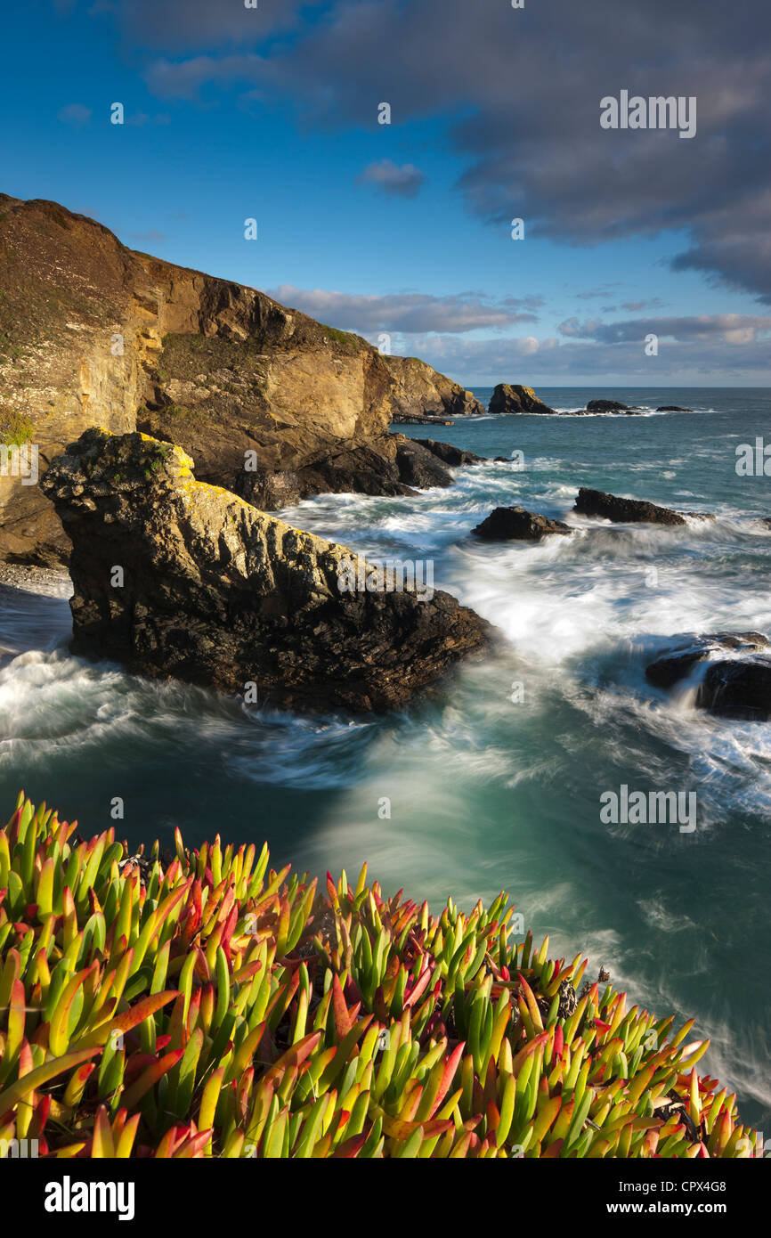 Lizard Point (the most southerly point in mainland Britain), Cornwall, England - Stock Image