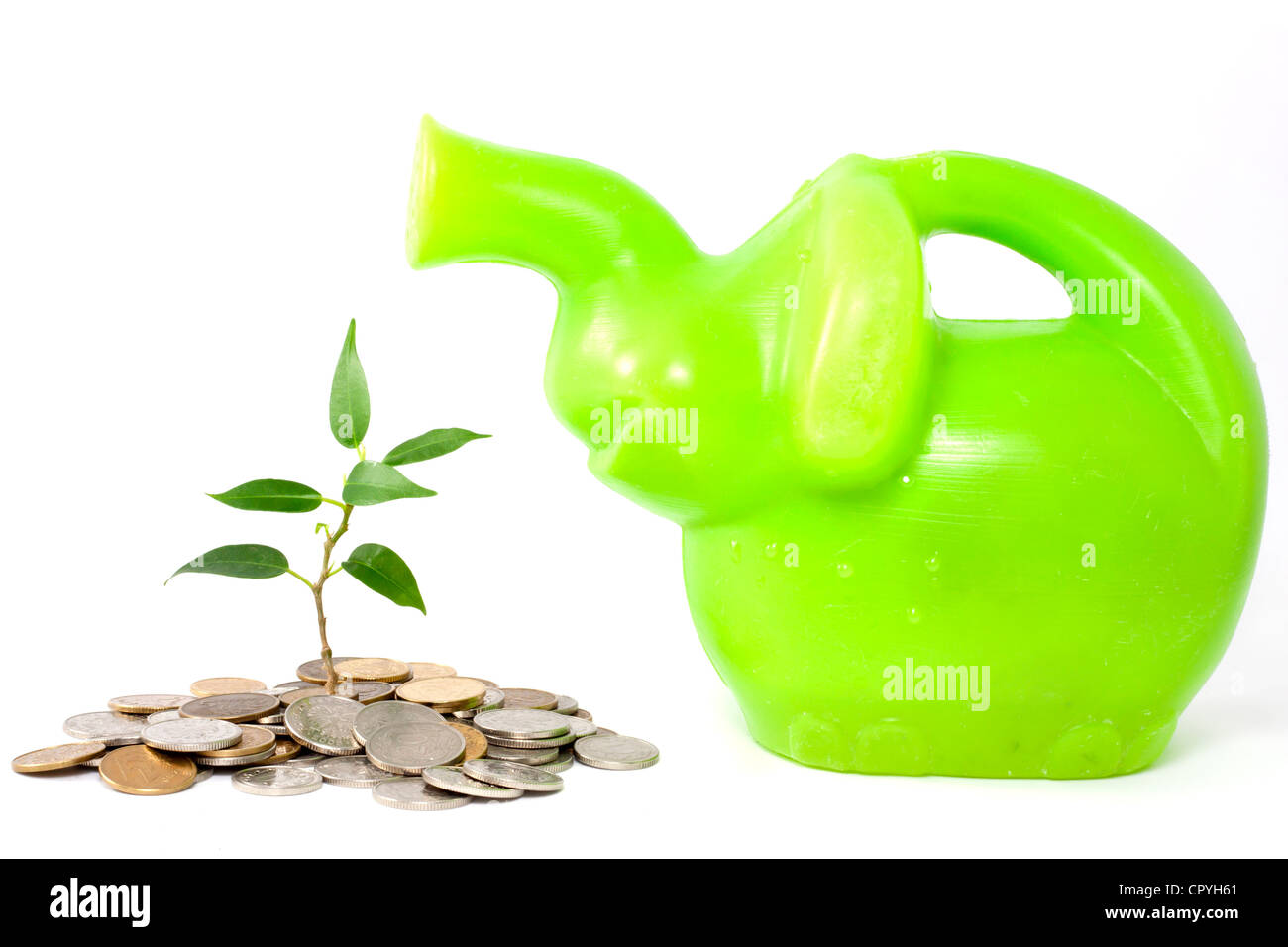 Green plant on the white background business metaphor of saving money in the bank and protect - Stock Image