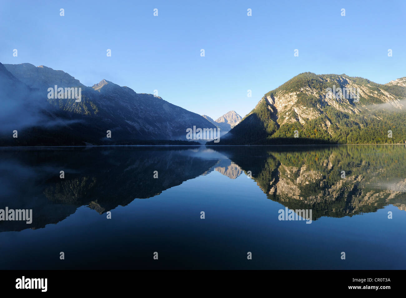 Plansee Lake, Ammergau Alps, Ammergebirge Mountains, looking towards Thaneller Mountain in the Lechtal Alps, Tyrol, - Stock Image