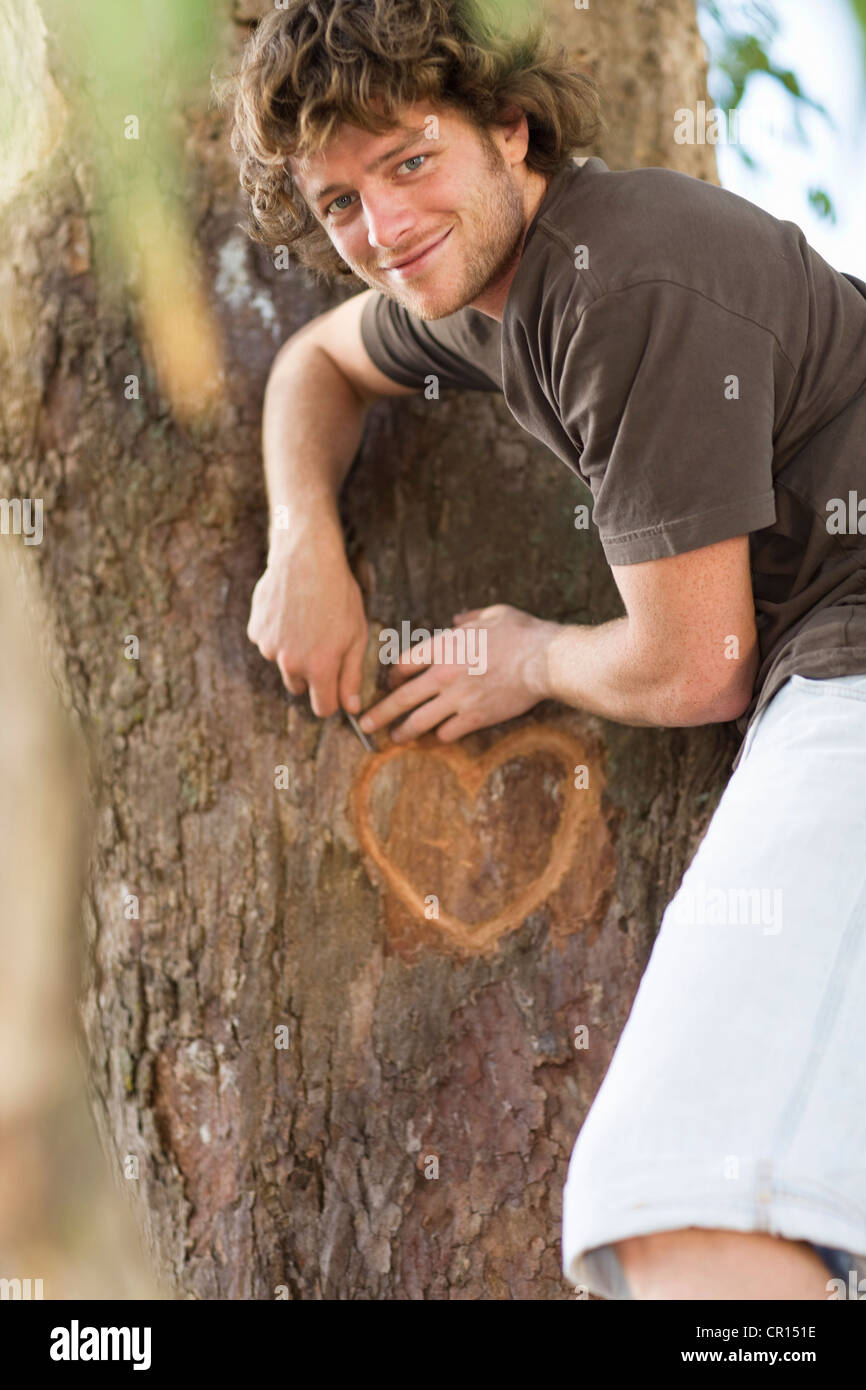 Smiling man carving heart in tree - Stock Image