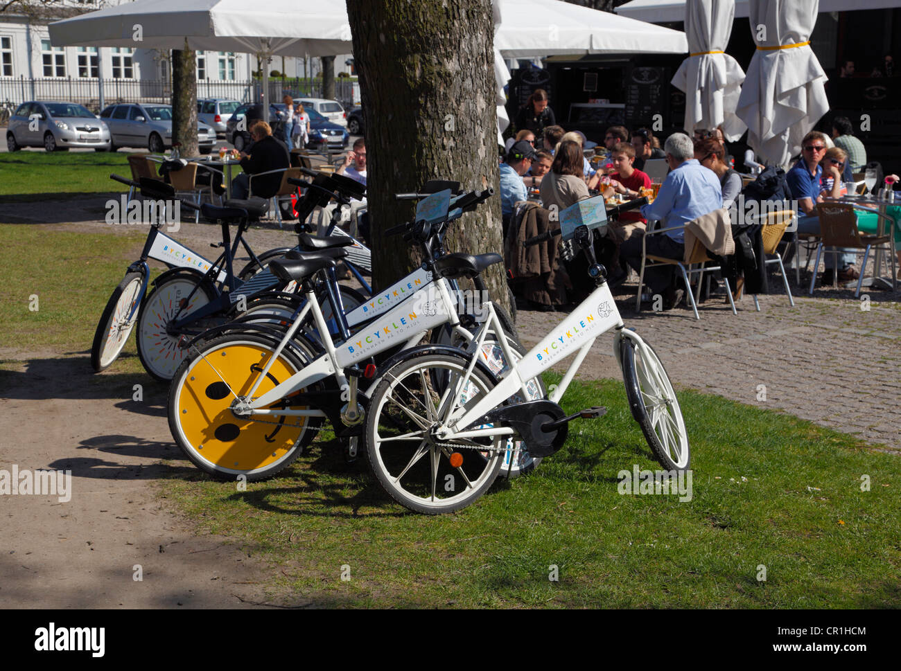 free-city-bikes-bycyklen-parked-up-a-tre