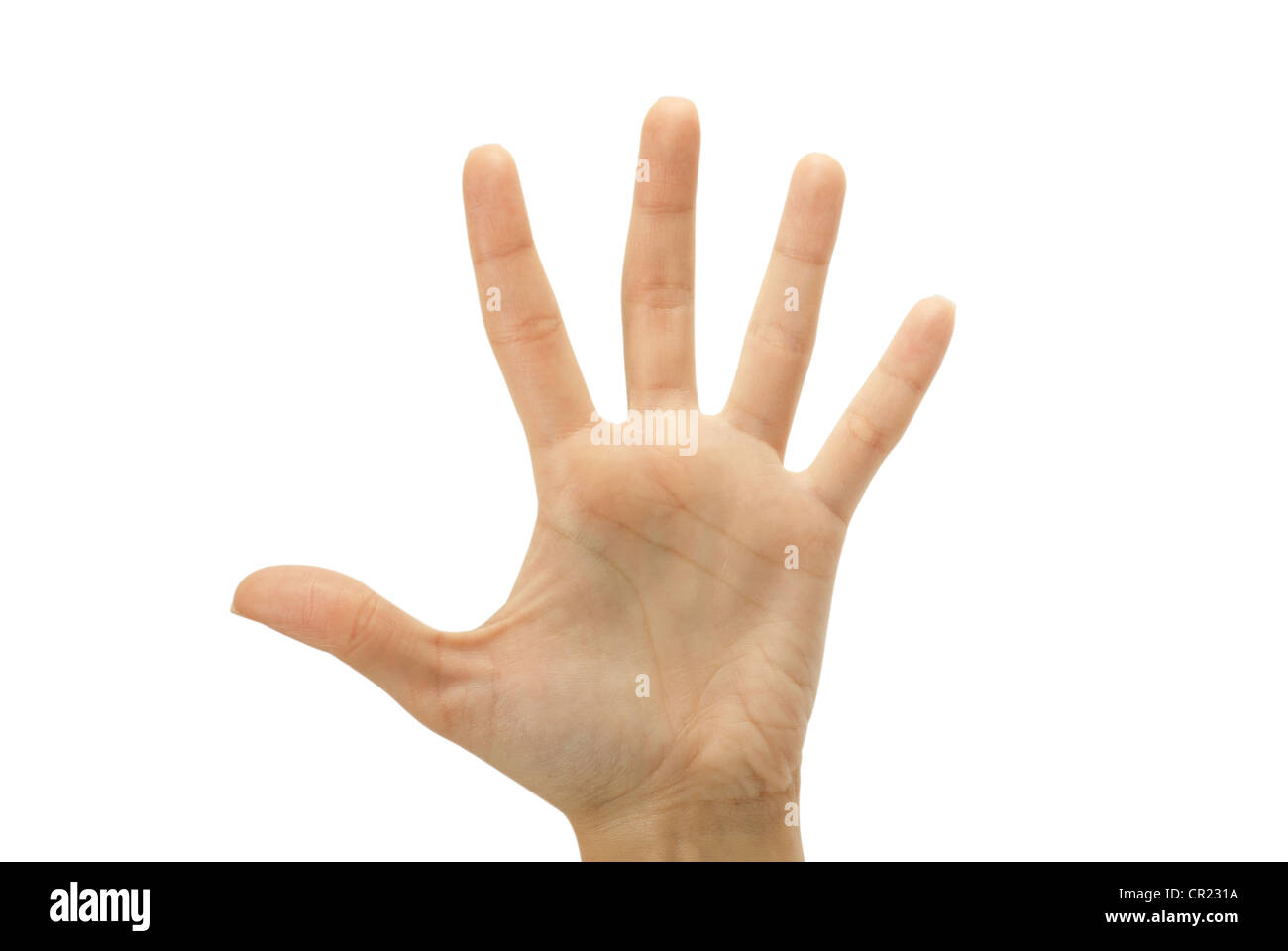 hand gestures isolated on a white Stock Photo